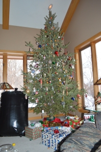This year we got to help decorate and put up G &G Maloney's Tree!